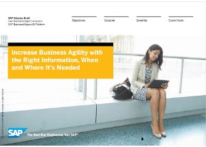 SAP Business One Busines Intelligence BI
