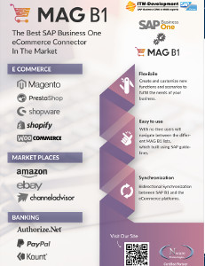 MAG B1 E-Commerce Connector for SAP Business One ITM Dev